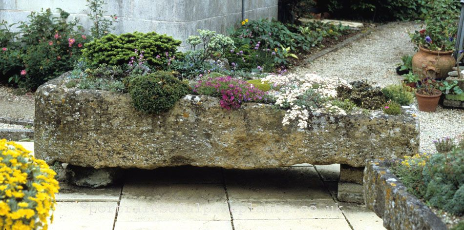 Delightful Plants For A Trough Garden: Select From A Huge Array Of Compact,  Low Growing, And Dwarf Plants Including Varieties Of: Alyssum Armeria  Campanula Dianthus ...