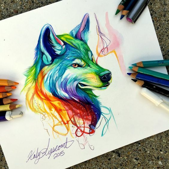Colorful Wolf Colored Pencil And Mixed Media Drawing By