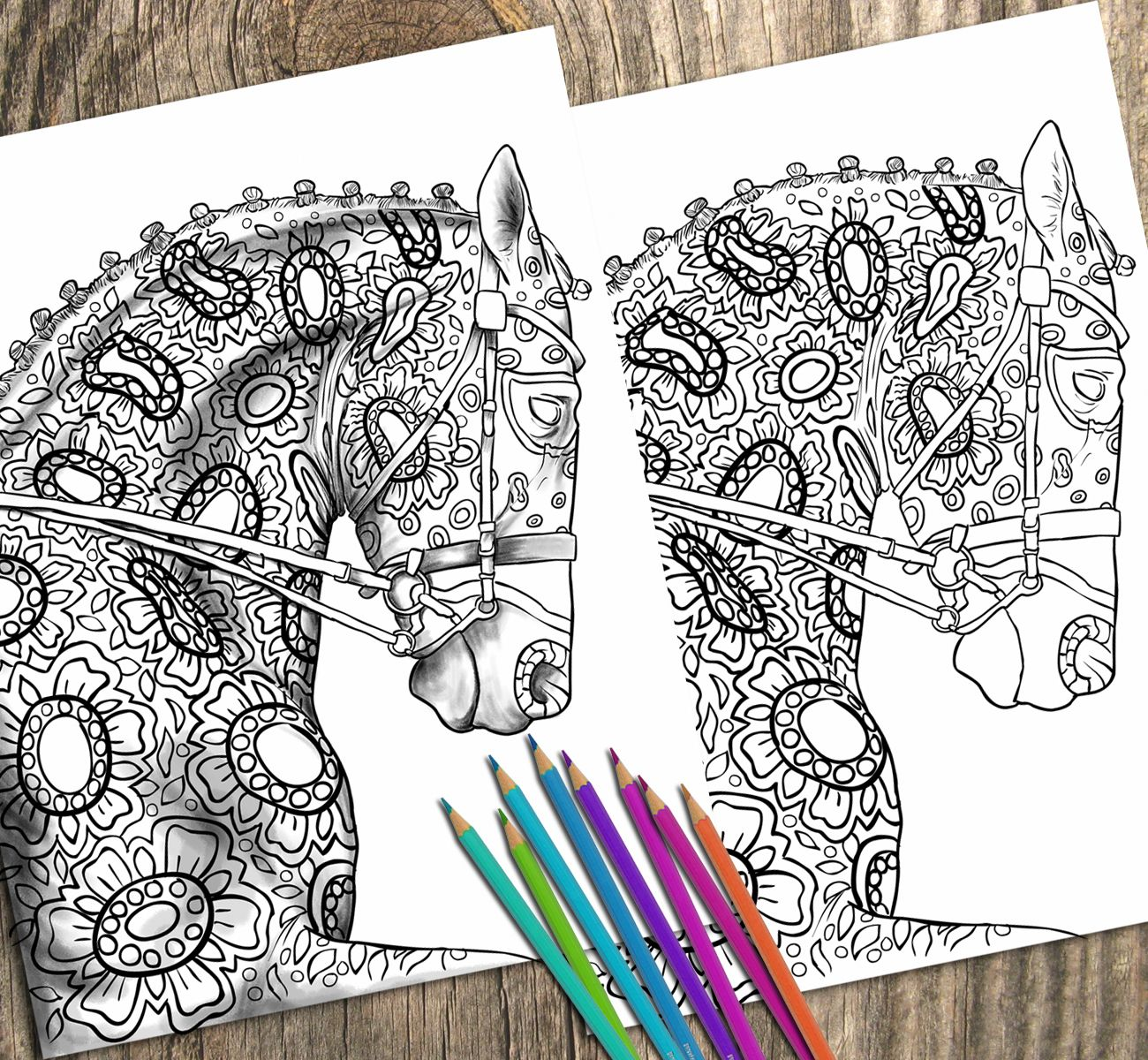 Adult Coloring Page For Grown Ups Do You Love Horses New Horse Book PagesColoring