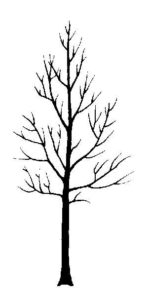 basic tree form