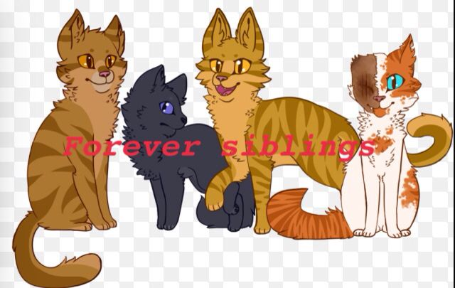 Brackenfur Cinderpelt Thornclaw And Brightheart They