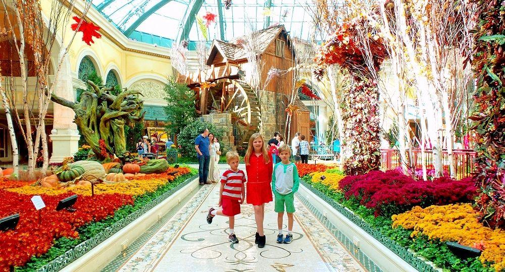 6d8dc485289e0be0d430b766efdba8a1 - Bellagio Conservatory And Botanical Gardens Vegas