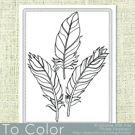 Plumas Para Imprimir Para Colorear Página Para Adultos Por