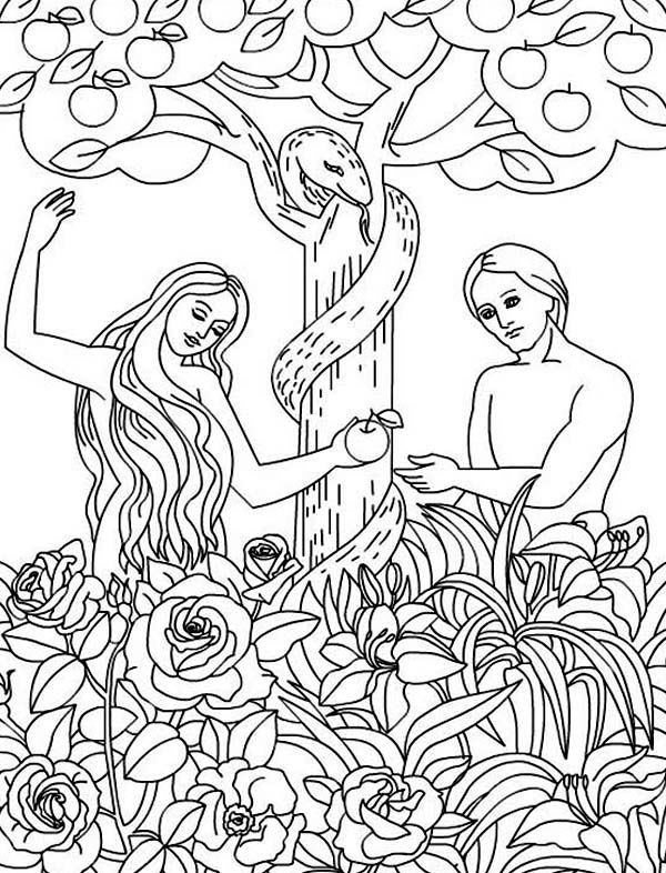 Adam And Eve Disobey God Command Coloring Page Jpg 600 786