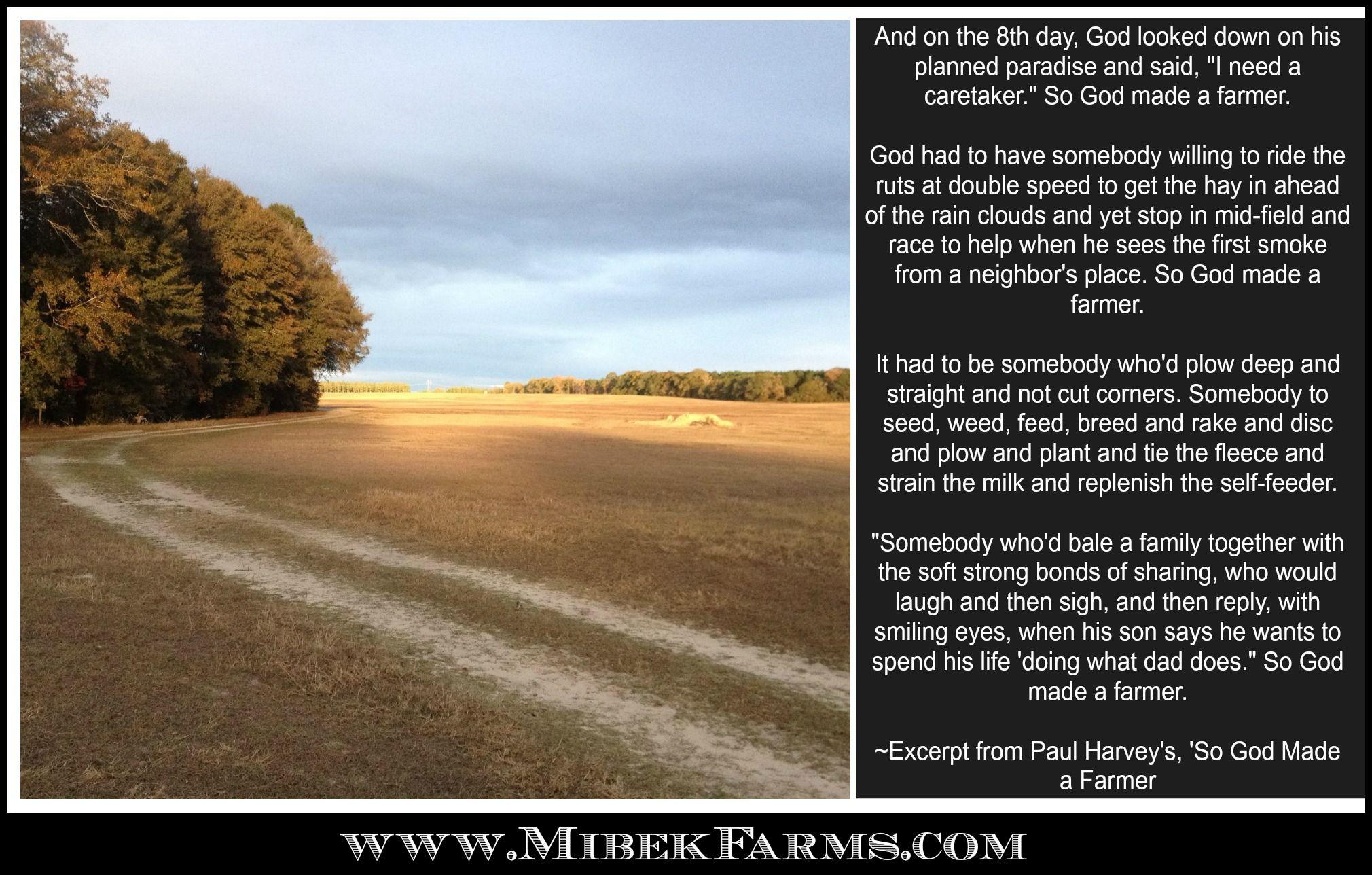 Paul harveys essay on dirt roads creative essay ghostwriting services gb