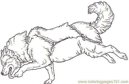 A Sled Dog Colouring Pages Page 3