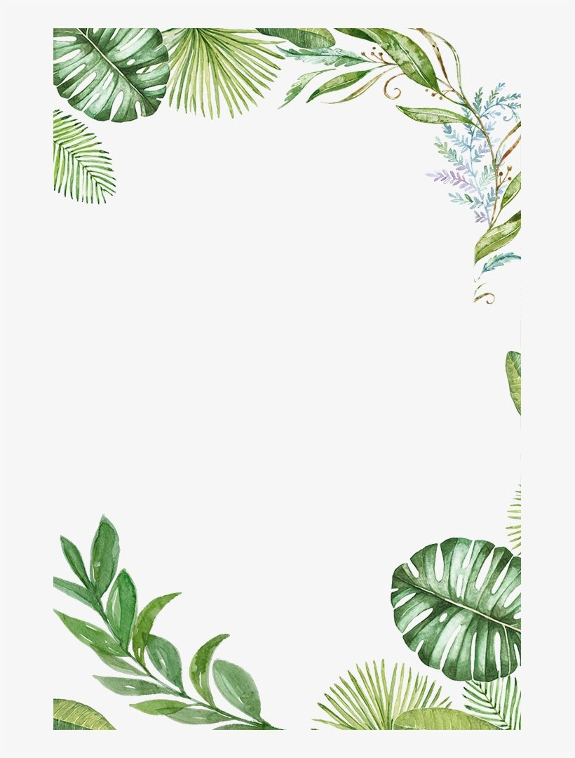 Download Plants Tropical Jungle Leaves Tropical Leaves Frame Png