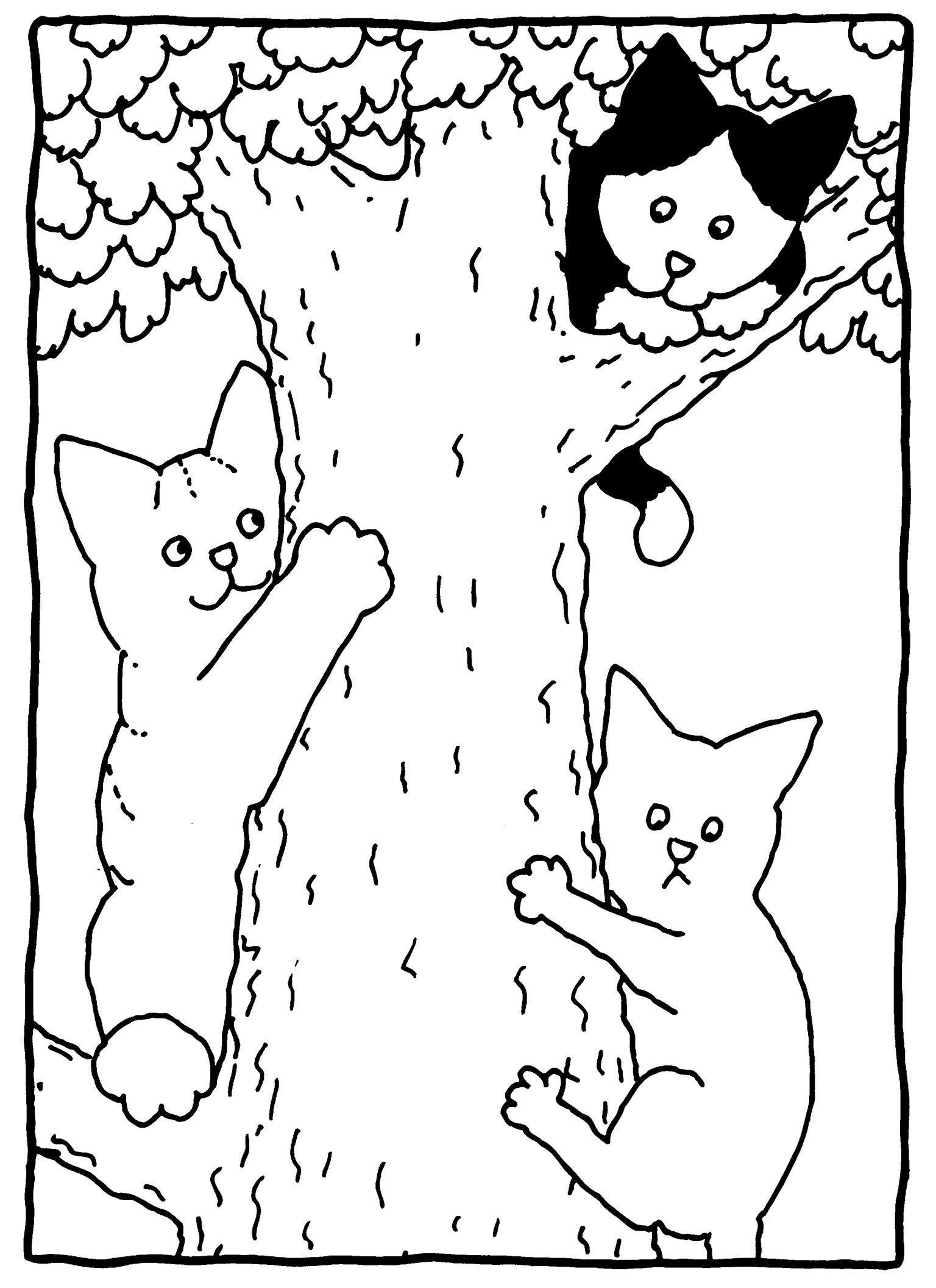 Fris Kleurplaten Hond En Kat Samen