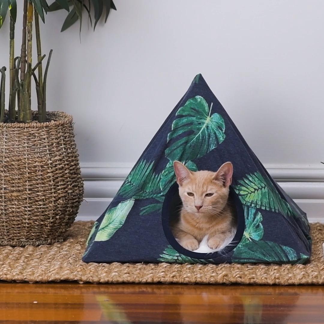 Photo of DIY Cat Bed