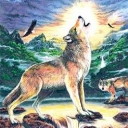 Color By Number Coloring Pages Colored Pencils Wolf Craft Color Pencil Art