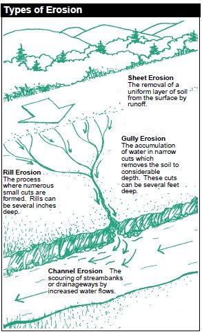 Various ways to prevent soil erosion each method has its own various ways to prevent soil erosion each method has its own unique qualities and is depending on the soil erosion cause erosion pinterest pollution ccuart Image collections