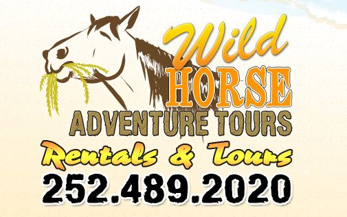 Outer Banks Wild Horse Tours Corolla Nc Horse Adventure Adventure Tours Obx Vacation