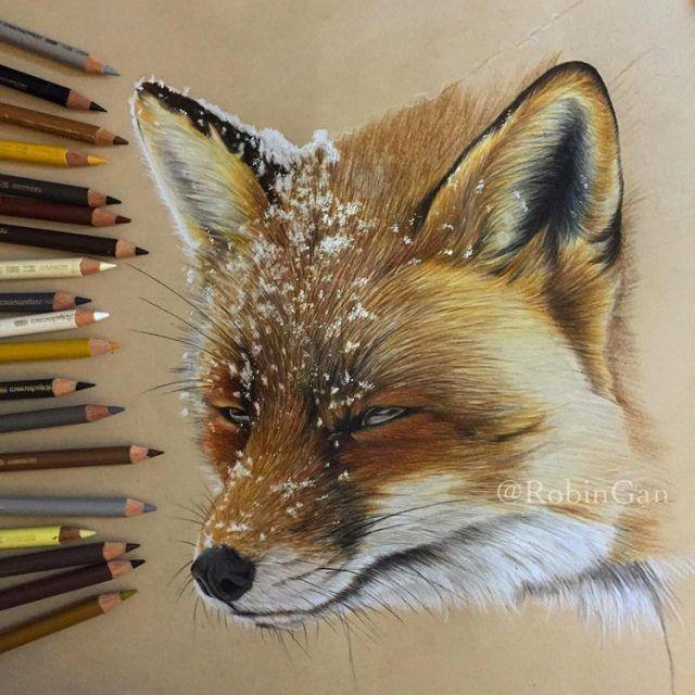 Extrêmement Les dessins très réalistes de l'artiste Robin Gan | Dessins  JI84
