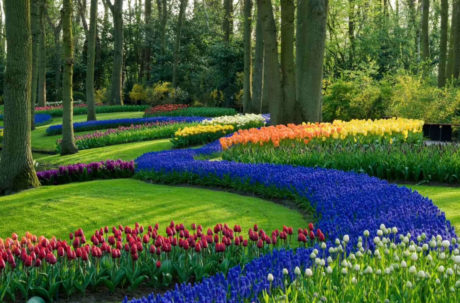 Um jardim um espa o planejado normalmente ao ar livre for Jardin 3d