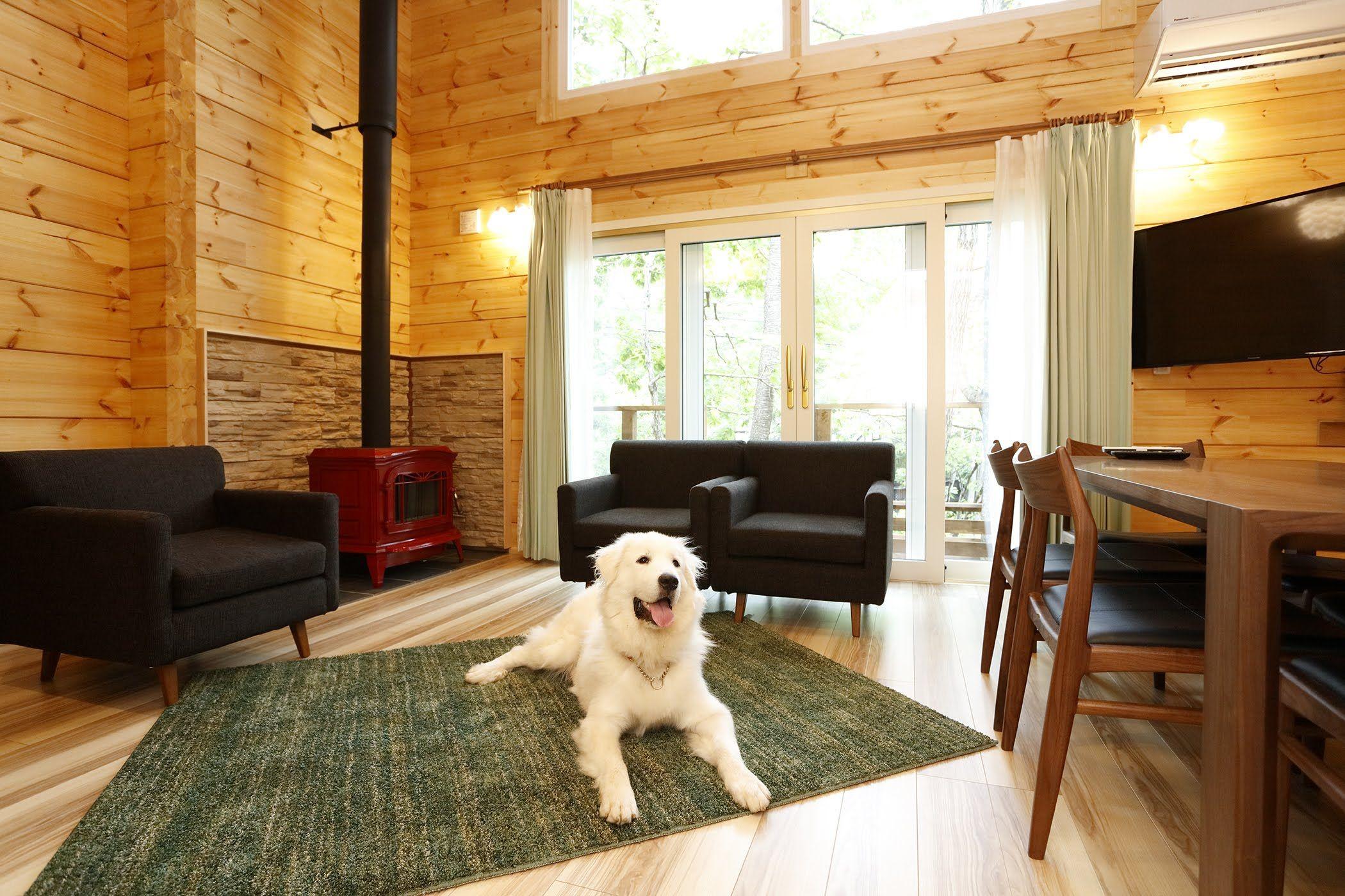 愛犬と過ごす高原リゾートホテル ペット コテージスタイル フォレスト