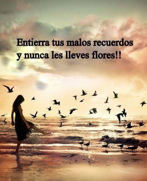 〽️Entierra tus malos recuerdos y nunca les lleves flores !!