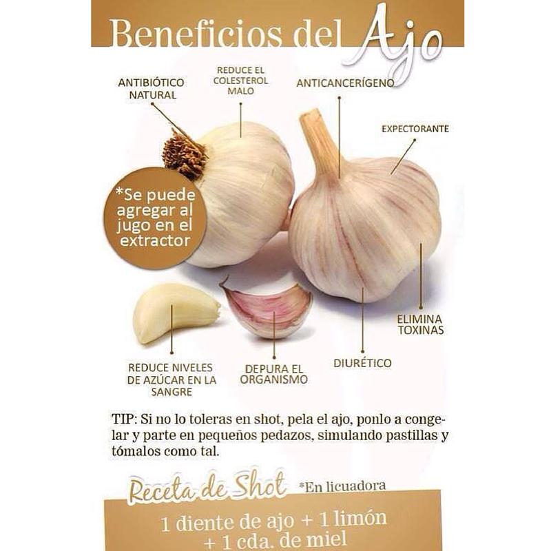 Muchas personas le huyen al ajo por su olorosa característica  Pero estamos seguros que después de leer los beneficios que este puede traer a tu organismo, empezarás a incluirlo dentro de tus comidas  is part of Health and nutrition -