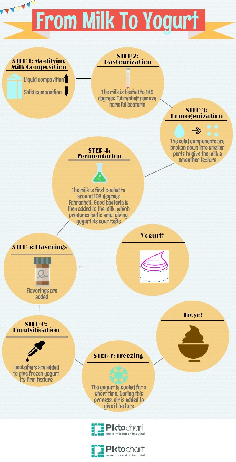 small resolution of an infographic describing the process of making yogurt