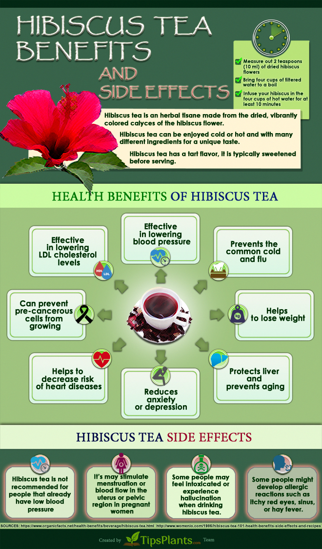 10 Diy Hibiscus Hair Mask How To Use Hibiscus For All Hair Problem Timeshood Hair Mask Hair Fall Remedy Hair Mask For Growth