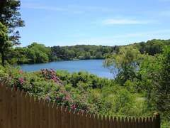 The view of Skinequit Pond, a l5 acre kettle pond has heron, osprey, painted and box turtles, and plenty of fish. One corner of it features a herring run. - 5 Ocean Street South Harwich Cape Cod New England Vacation Rentals