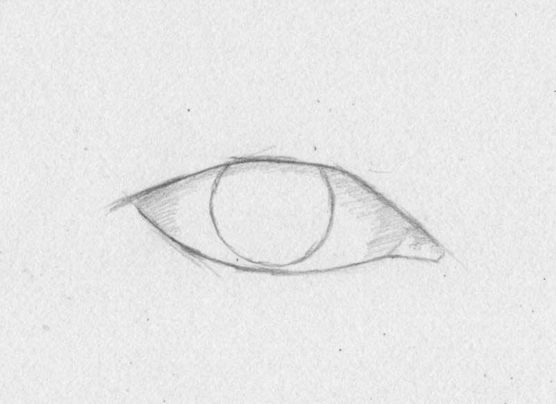 zeichnen lernen  augen pupille iris  tutorial  kunst