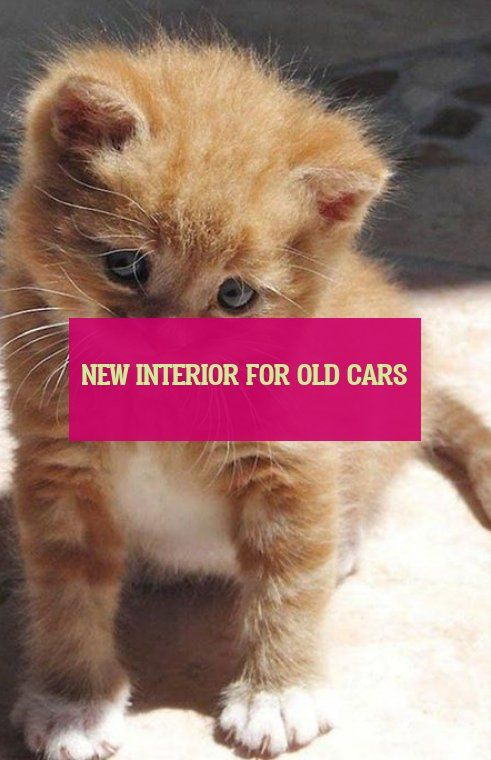 Nouvel Intérieur Pour Voitures Anciennes New Interior For Old Cars