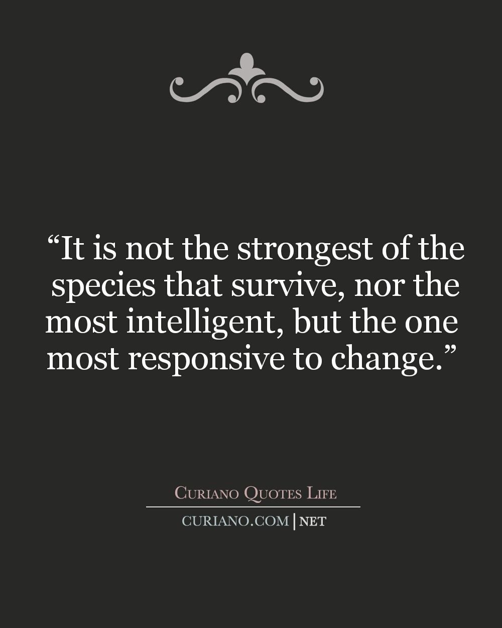 Strong Quotes About Life This Blog Curiano Quotes Life Shows Quotes Best Life Quote
