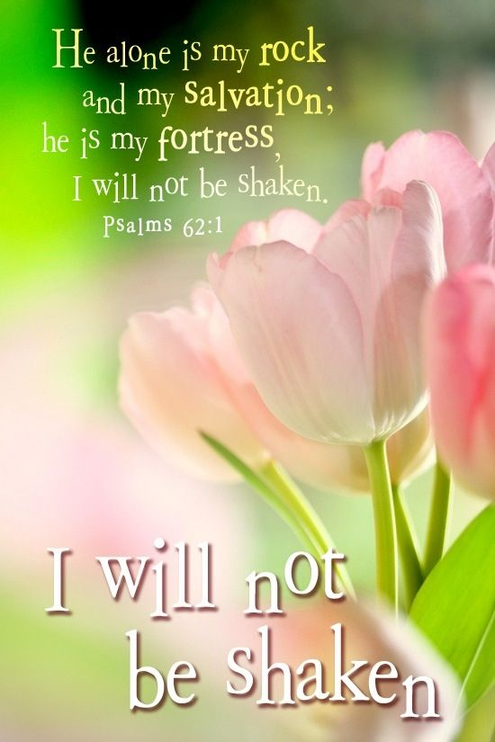 I am at rest in God alone; my salvation comes from Him. He alone is my rock and my salvation, my stronghold; I will never be shaken.  Psalms 62:1-2
