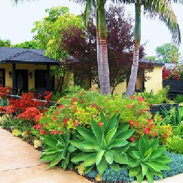 pin errica adams plants &
