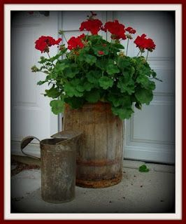 old barrel and geraniums...this flower looks good planted in anything...but the barrel is so rustic country.