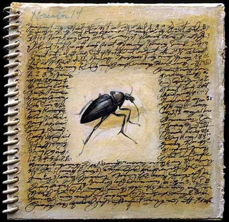"suzanne stryk ""Field Book (beetle)""    2000     5""   x 5""      mixed media on handmade notebook"