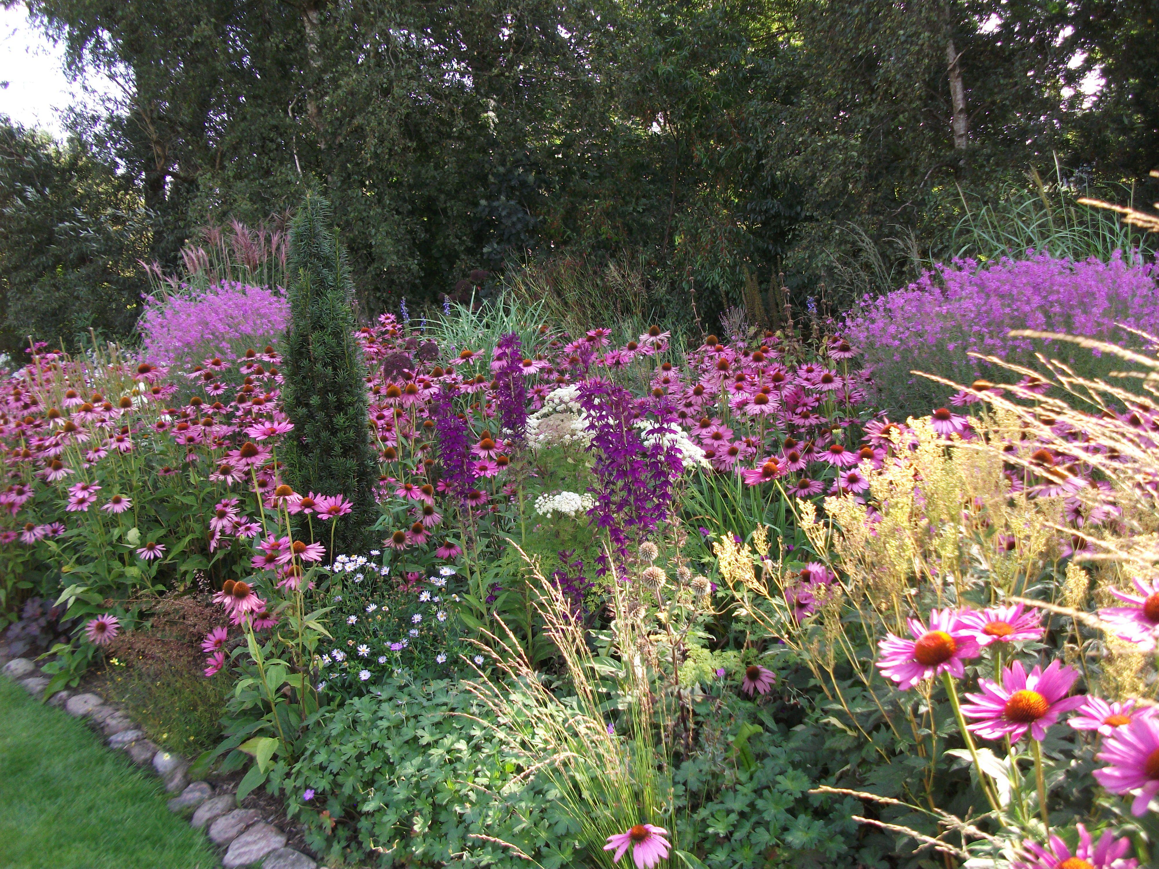 Garten Moorriem Garten Terrasse Garden Garden Design Und Plants