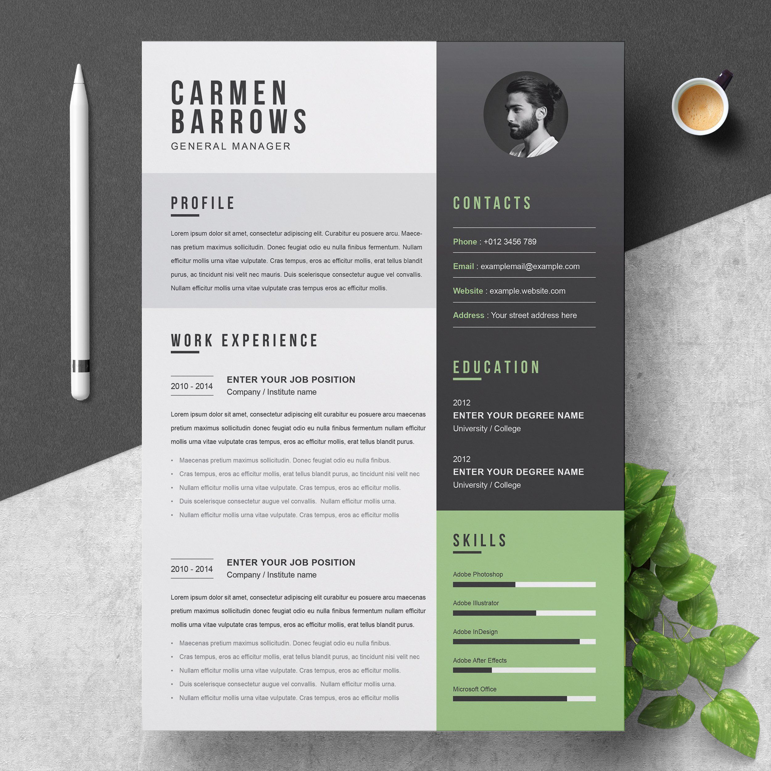 Professional Resume Cv Template By Resumeinventor On