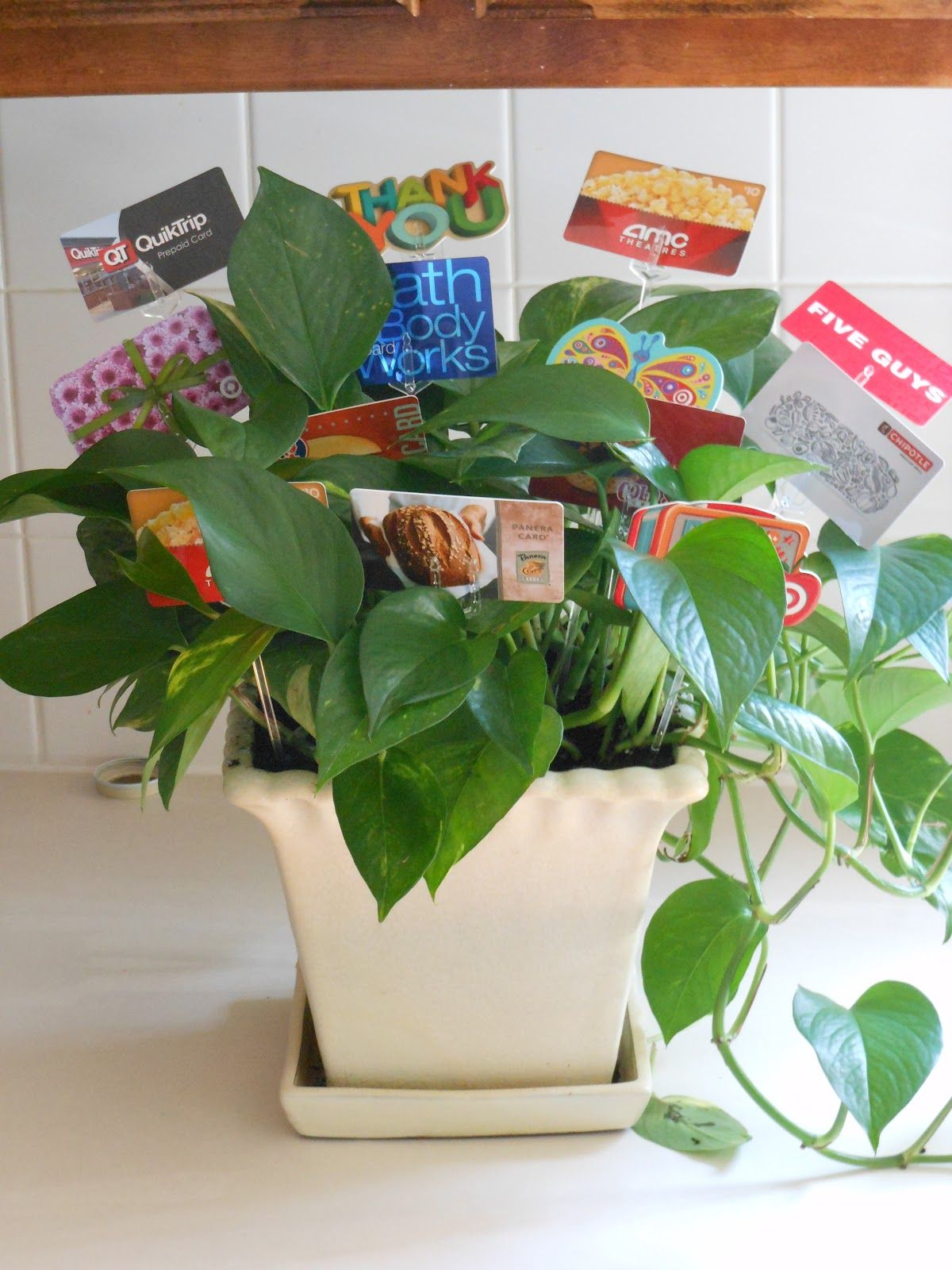 Gift card tree ideas pinterest pictures to pin on pinterest pinmash 139 negle Gallery