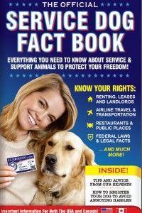 Servicedogfactbook Service Dogs Pinterest Service Dogs