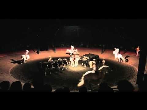 On achève bien les anges (élégies) / Théâtre équestre Zingaro