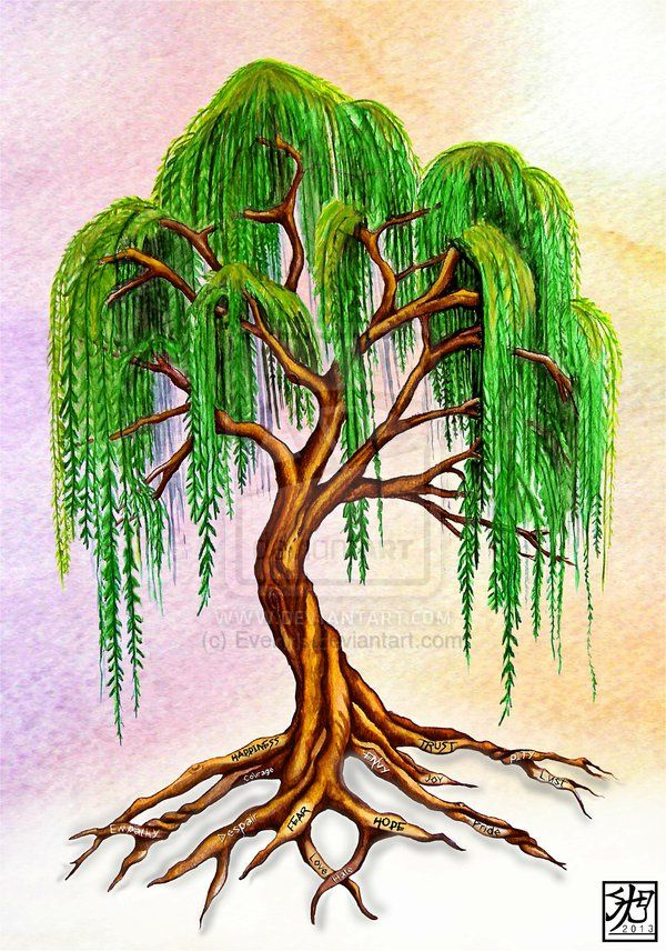 Willow Tree Tattoo Weeping Willow With Virtue Roots By Everiris