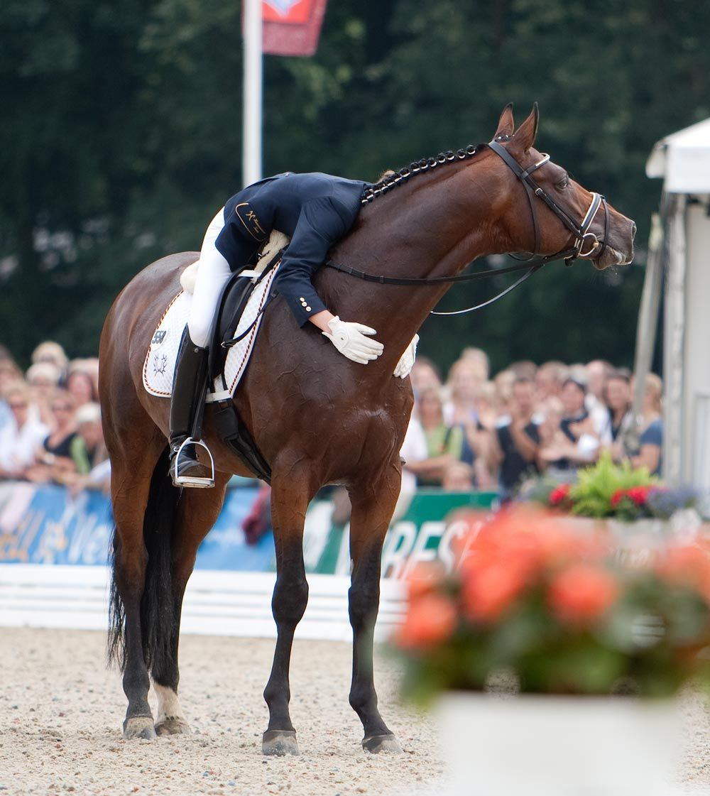 I have noticed, without fail, these dressage and hunter/jumper riders praise their mounts after a performance.