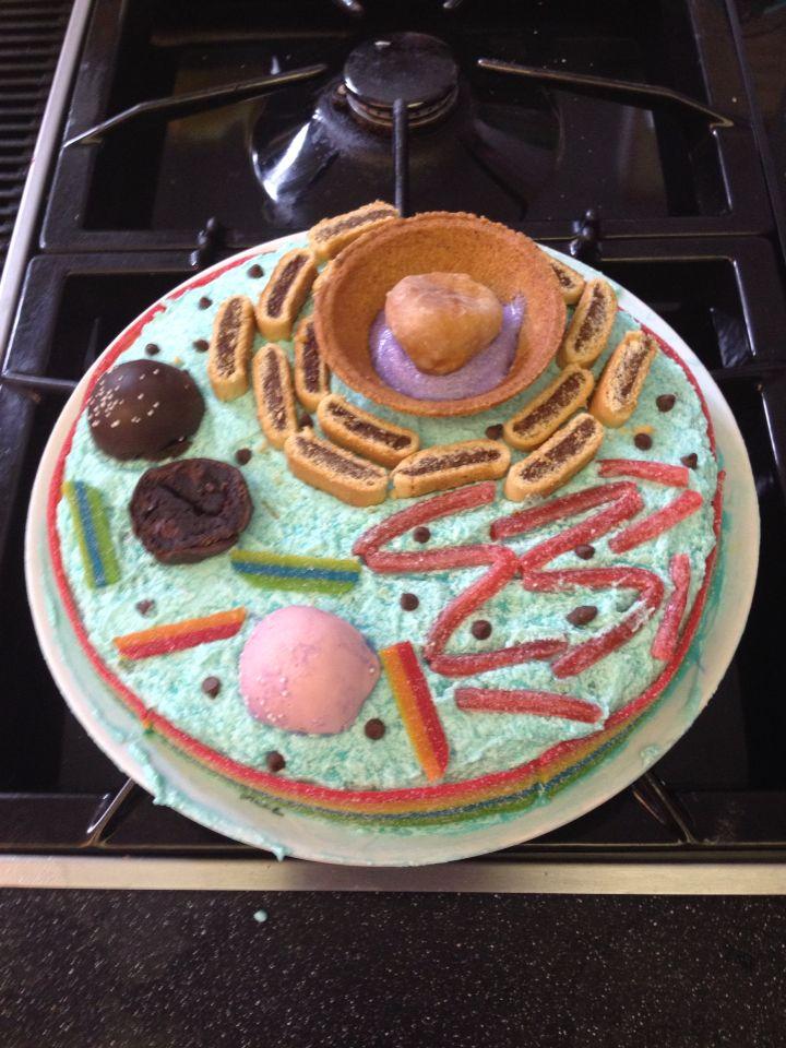 Edible cell Cell Cake | Animal cell, Edible cell, Edible ...