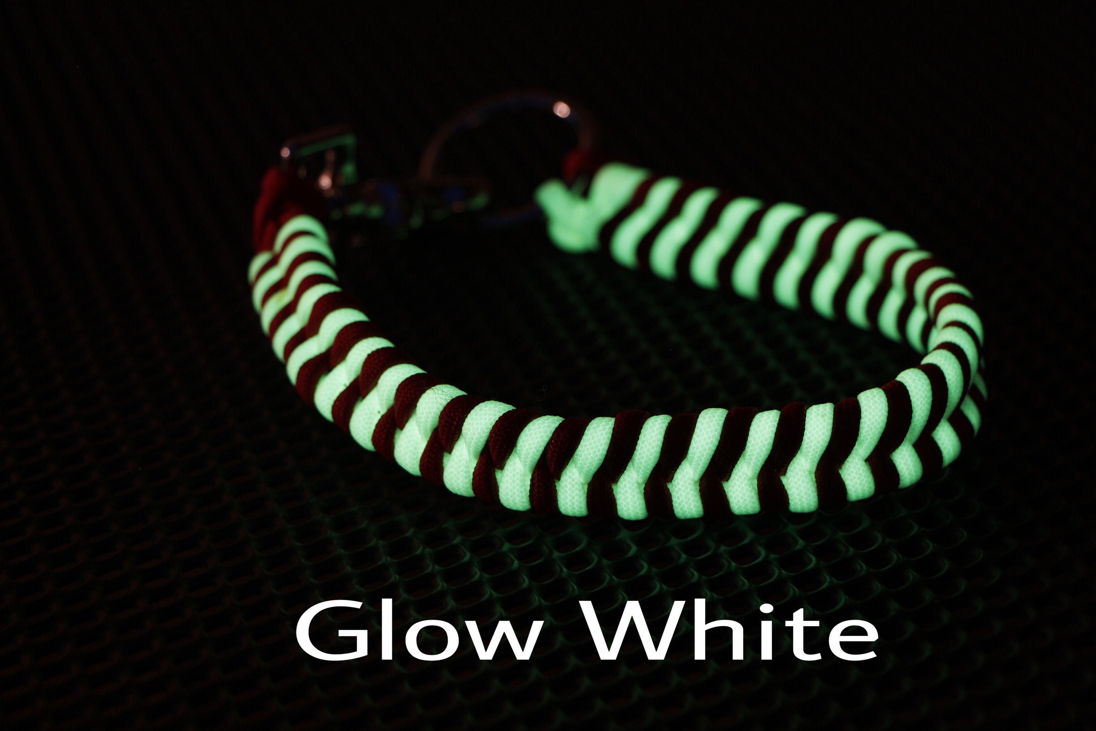 Sicherheit und Stil vereinen mit dem Glow Collar 😍 Durch die fluoreszierenden Eigenschaften werden weder Batterie noch hässliche LEDs benötigt! Einfach das Halsband ausreichend belichten und schon seit ihr auf der sicheren Seite‼️🤓🐶#dogslife #dogsofinsta #platz #sitz #udogspa #udog #udogtraining  #hundetraining #hund🐶 #hunde #welpen #welpenliebe #welpentraining