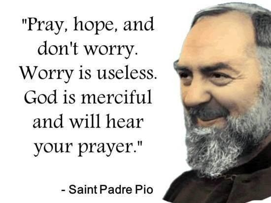 Padre Pio Quotes Little Plant Of Stfrancis Favorite Quote Of Stpadre Pio  ❤️h .