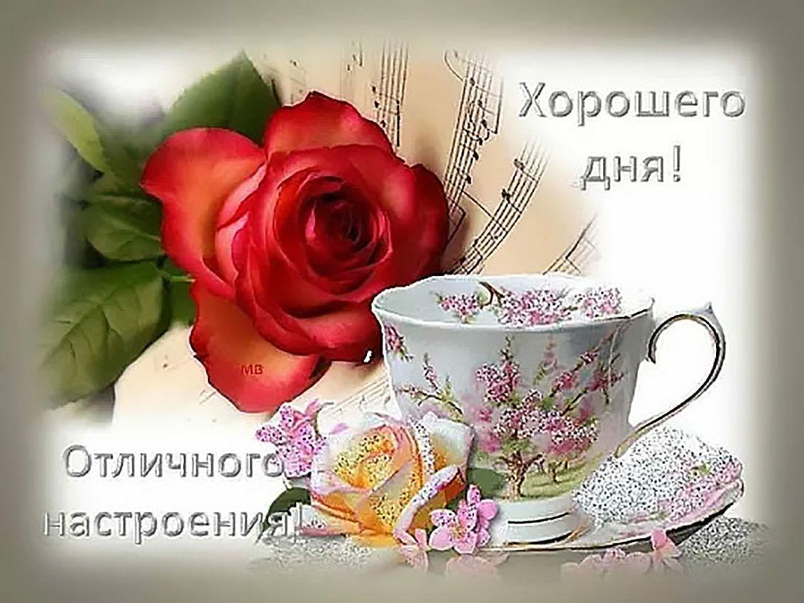 Хорошего дня и отличного настроения   Открытки, Счастливые ...