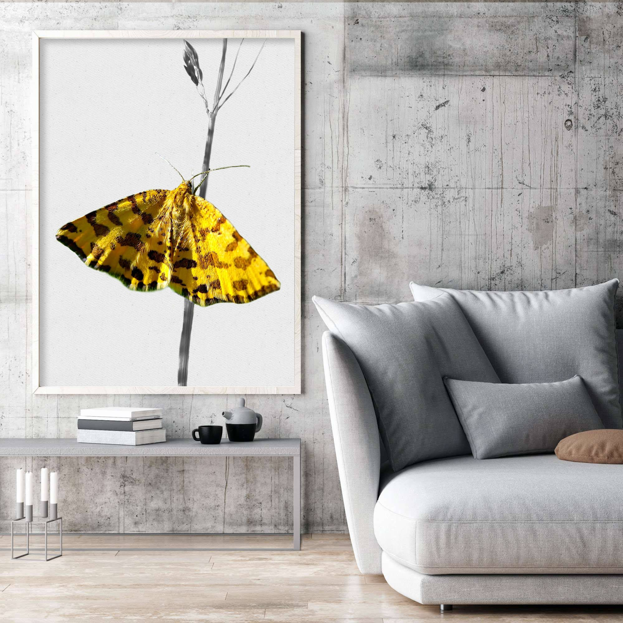 Yellow butterfly print wall art decor butterfly print poster