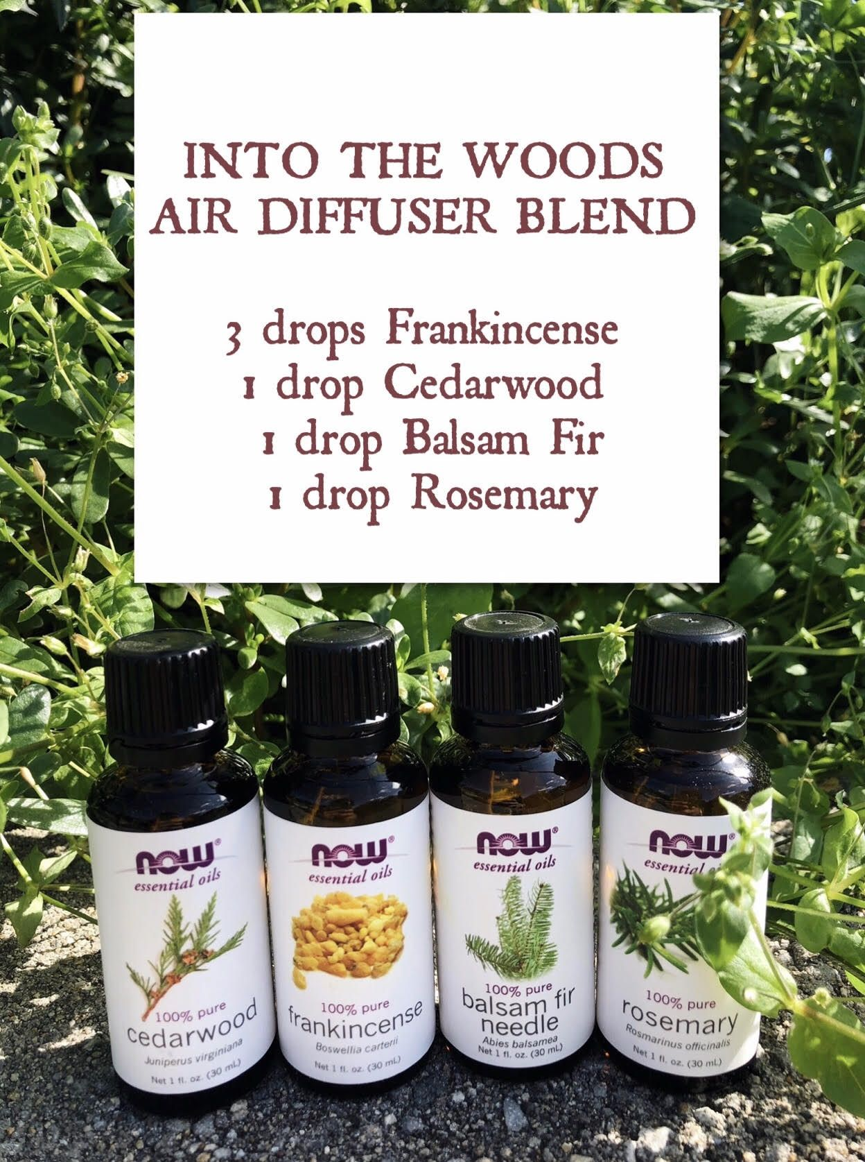 Perfect air diffuser blend just in time for Fall! 3 drops