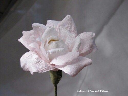 Ferraro rocher crepe flower.