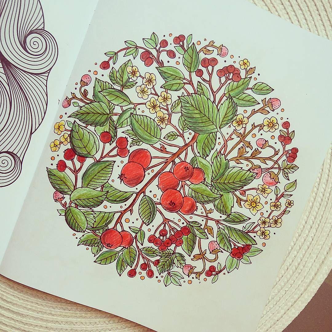 Monika Miedzinska On Instagram Male Wielkie Dzielo Skonczone Uwaga Wciaaaaaaaaaaaaaga Jesien Jarze Coloring Books Instagram Posts Drawings