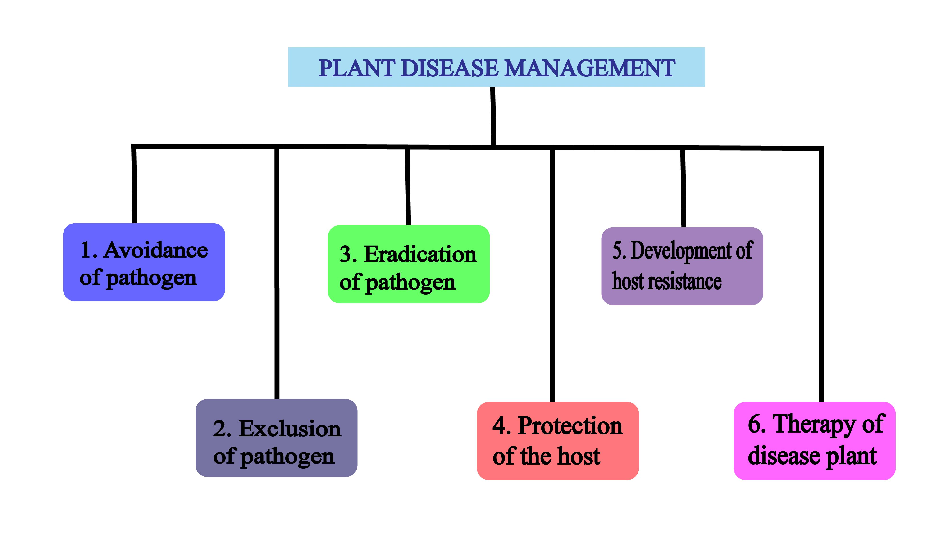 The Disease Management includes the idea of continuous