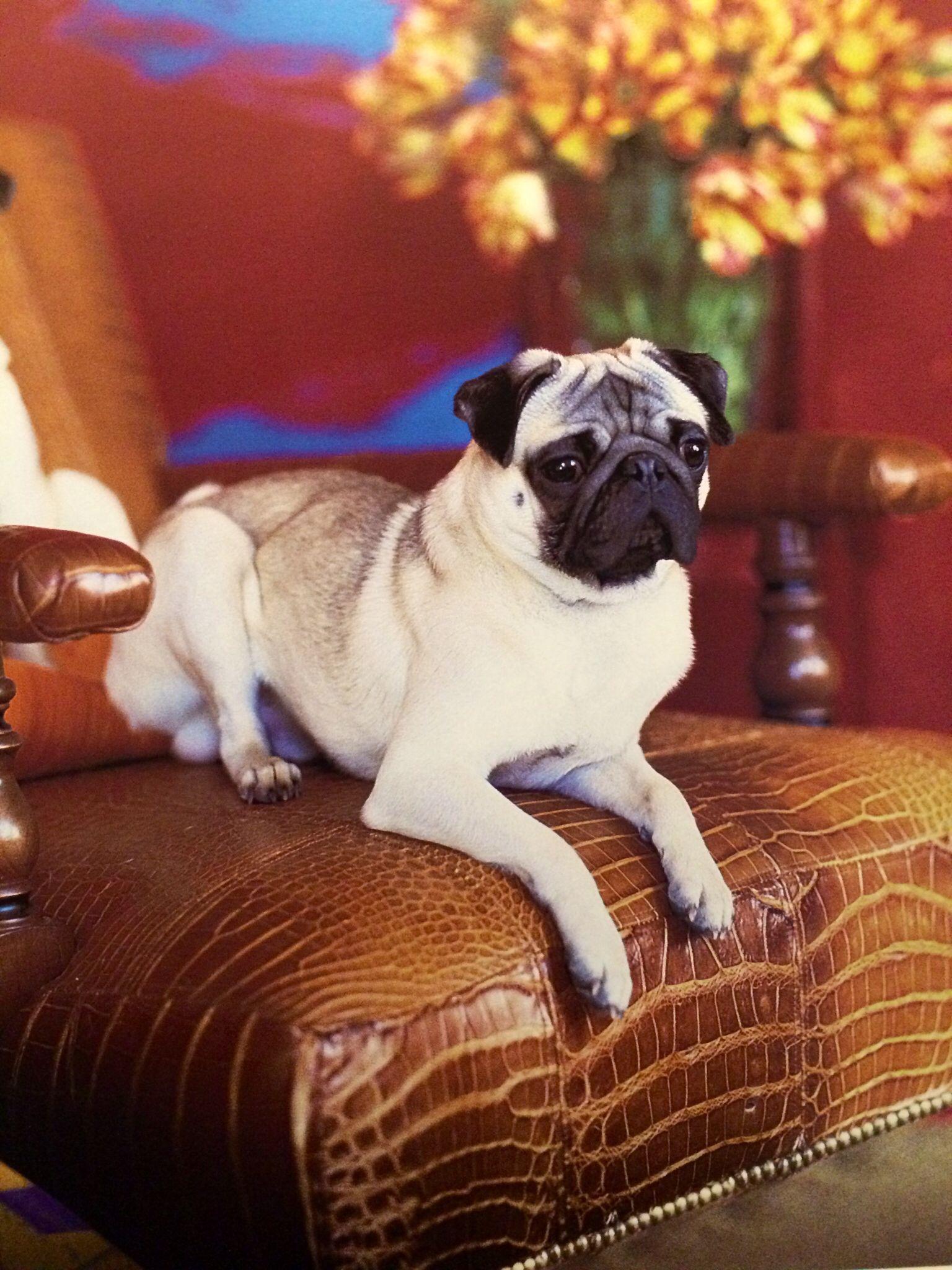 Ralph Lauren Home Oliver Chair
