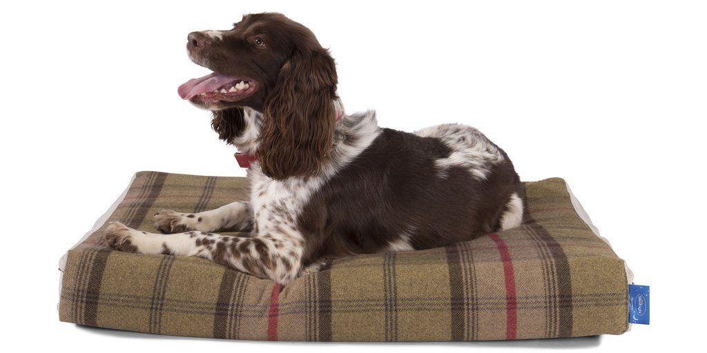 Silentnight Supreme Collection Luxury Pocket Sprung Dog