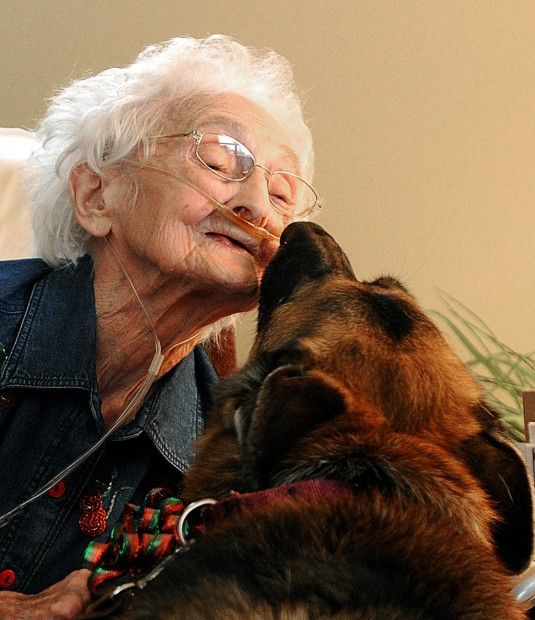 Pets offer love and companionship for the elderly, including